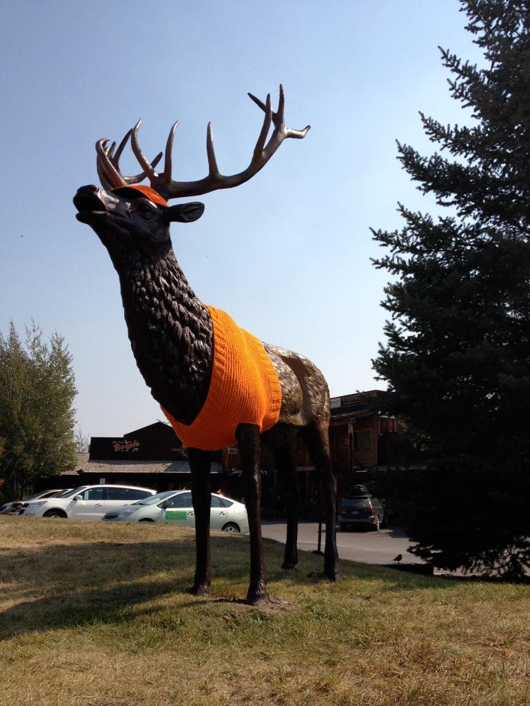 knitting, Wilson, Wyoming