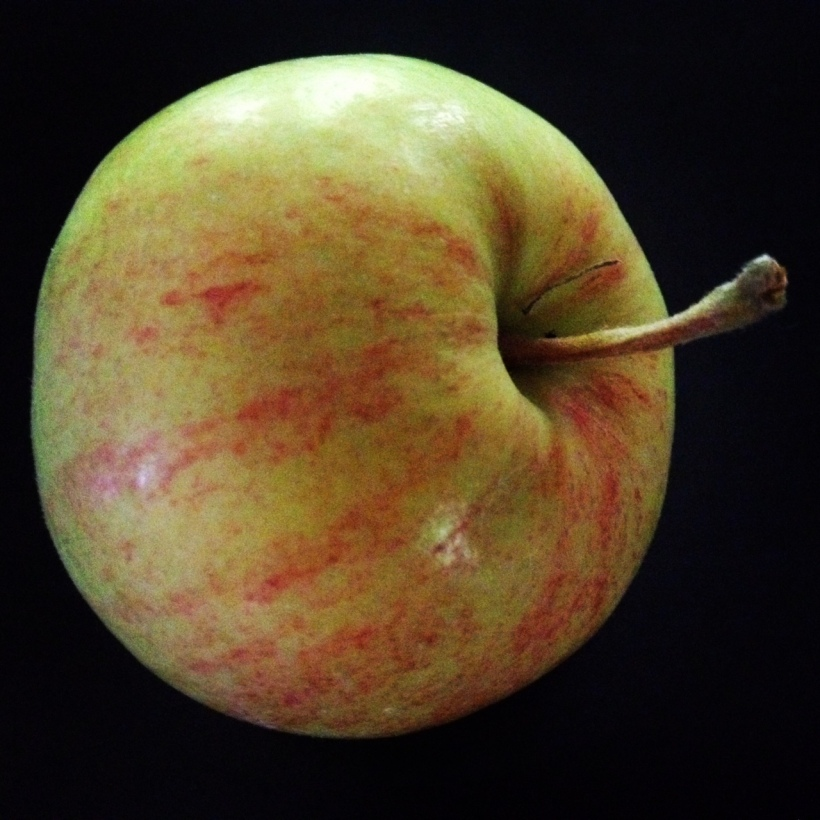 The Empire Apple, small as a plum